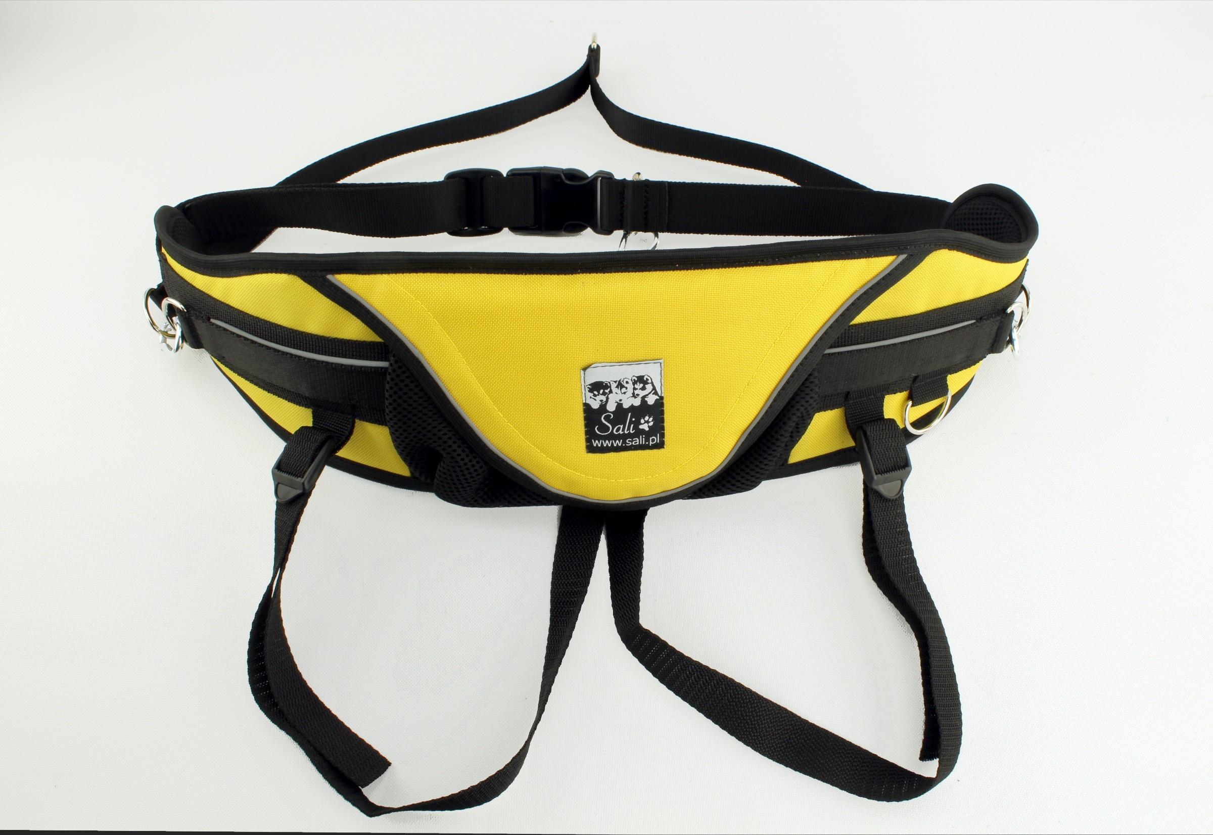 Sport niebieskie